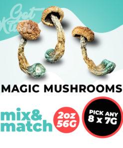Magic Mushrooms mix and match 56