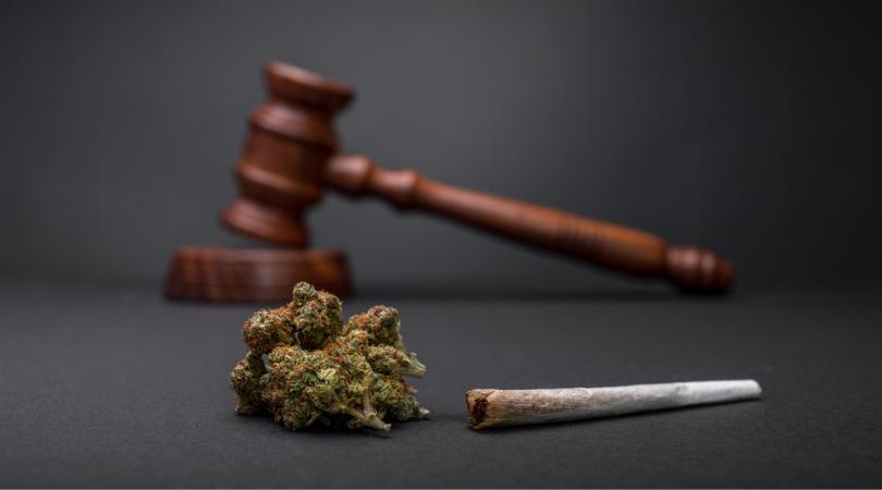 Your Marijuana Guide