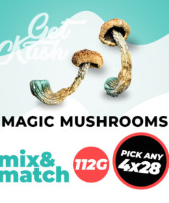 Magic Mushrooms Mix and Match 112