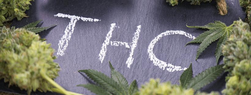THC as Antioxidant