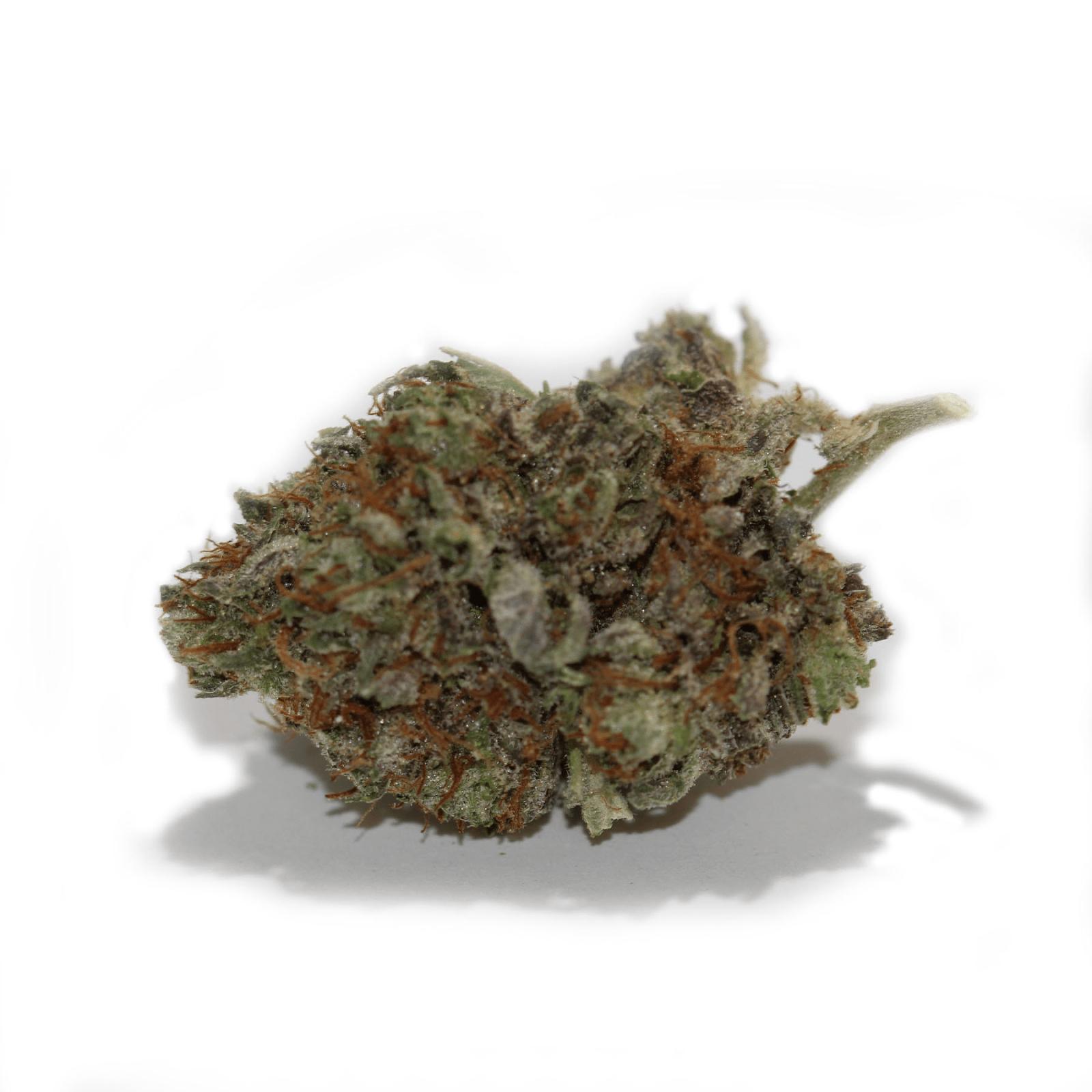 G13, weed